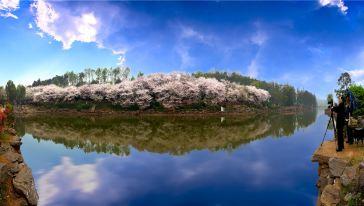 湖南省森林植物园 (19)