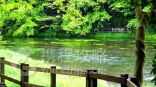 柿田川公园