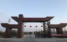 花漾年华牧场-天津-AIian