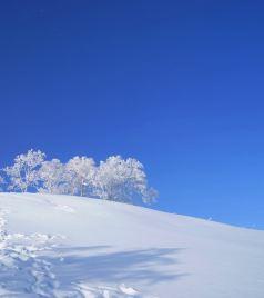亚布力滑雪旅游度假区游记图文-带着孩子去看东北,感受冰雪的童话世界,雪乡