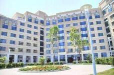 东方学院-海参崴-用户45260