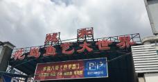 花地湾花鸟鱼虫市场-广州-美食林编辑
