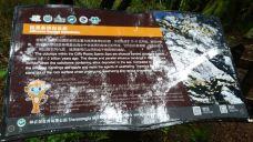 板壁岩-神农架-139****9875