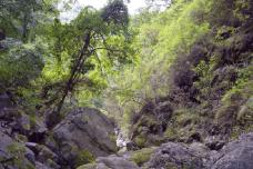 青松岭大峡谷-兴隆-AIian