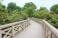 IMG_4483-放鸽桥-贵阳-汤瑞强