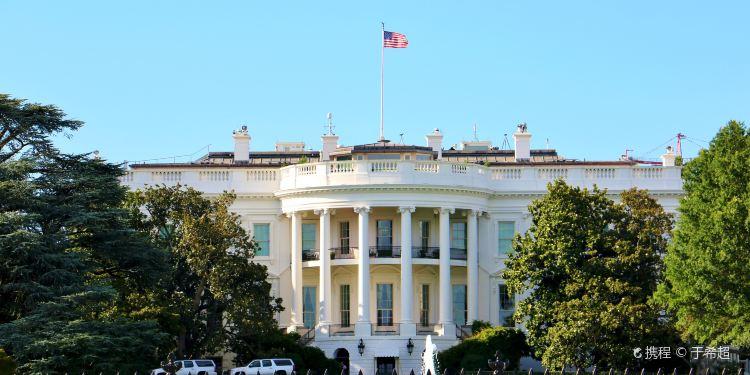 华盛顿图片