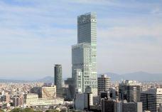 阿倍野HARUKAS摩天大楼-大阪-M30****8293