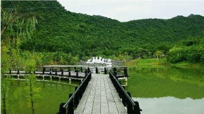 仙桥地下河 (15)