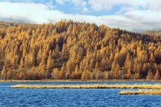 杜鹃湖-阿尔山-C年度签约摄影师