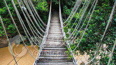 五指山热带雨林风景区
