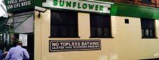 Sunflower Pub-贝尔法斯特