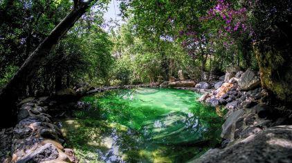 湖泉半山温泉 (16)