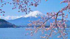 富士山-富士山-doris圈圈