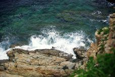 獐子岛-长海-尊敬的会员