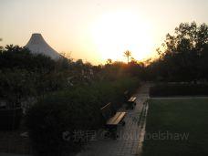Sunset Zoo-曼哈顿