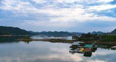 千岛湖钓鱼岛品鱼馆-淳安-鸭鸭爱生活