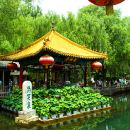 【Jinan One-Day-Tour】Baotu spring + Daming lake + Thousands buddhas mountain + food street + ancient street (Pick up&With meal)