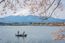 富士山-xiaoy216