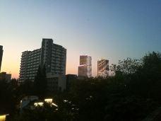 南京台城-南京-M18****229