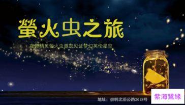 紫海鹭缘 (12)