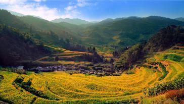 紫鹊界-正龙梯田