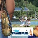 Huka Prawn Park-Lunch/Activities Combo
