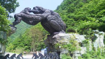 神农架(顺达) (2)