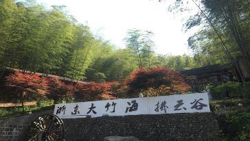 浙东大竹海 (1)