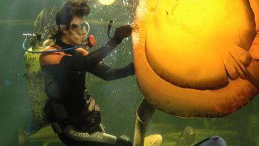 南宁海底世界14