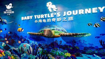 """长风海洋世界开启全新""""化身小海龟,探索大海洋""""欢乐之旅 - 改"""