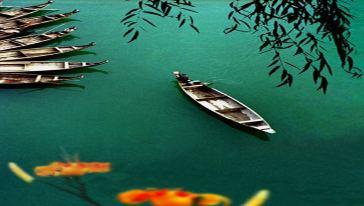 龙船水乡4