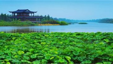 湿地保育及生态观光区