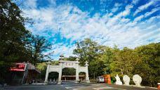 宝天曼生态旅游区-南阳-C年度签约摄影师