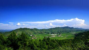 千叶草场 (1)