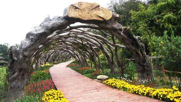 植物隧道 (1)