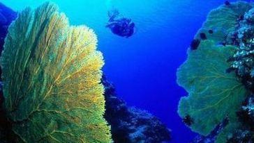 南宁海底世界9