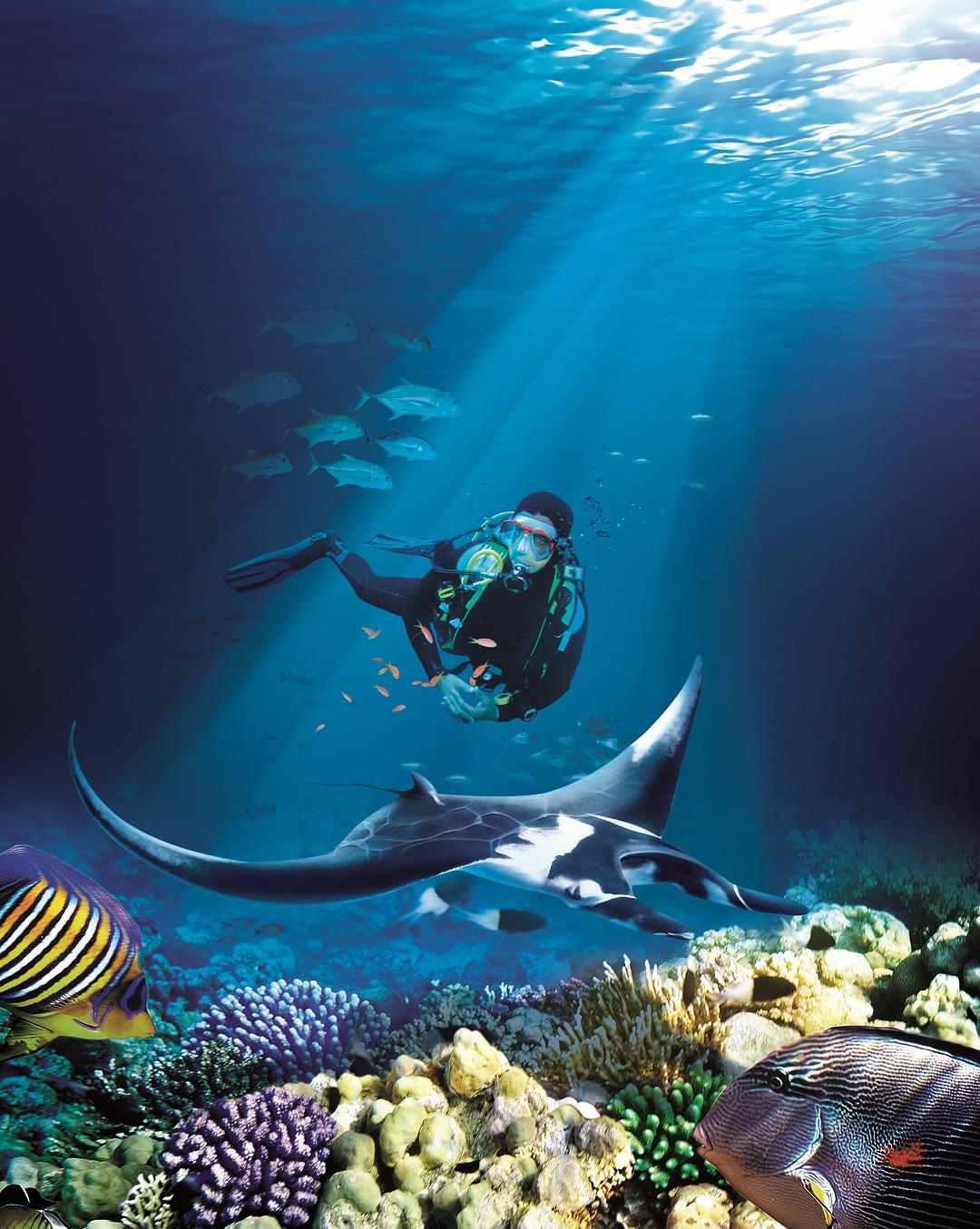 水上探险乐园-深潜