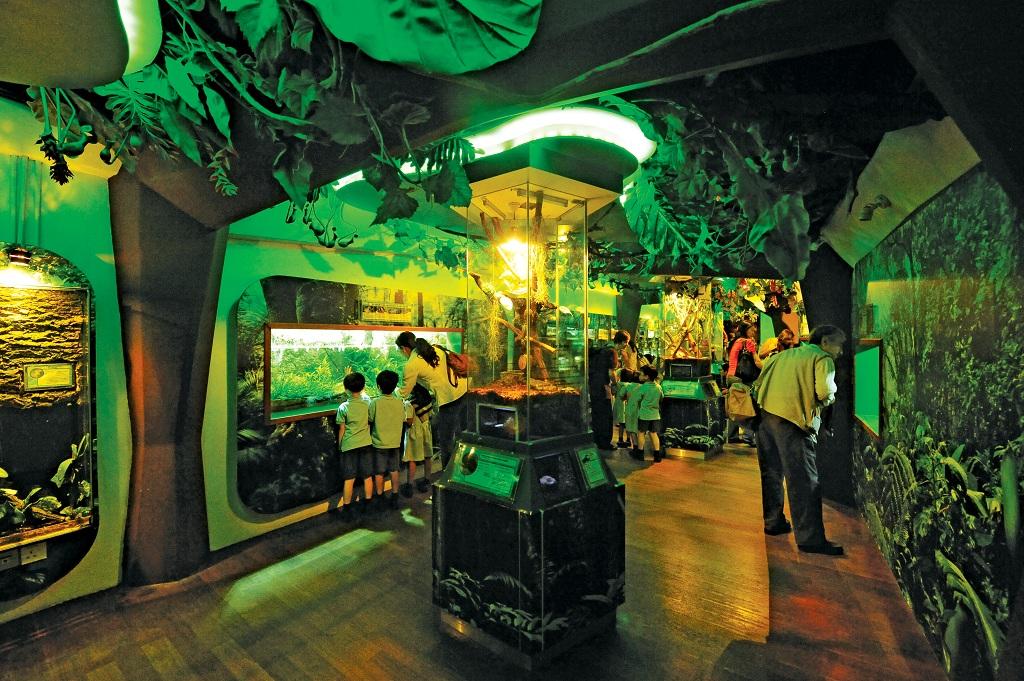 1415964吉隆坡水族馆4