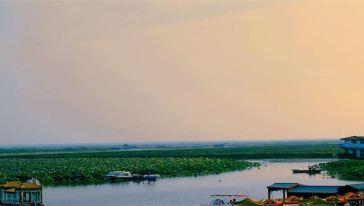 焦岗湖图片9