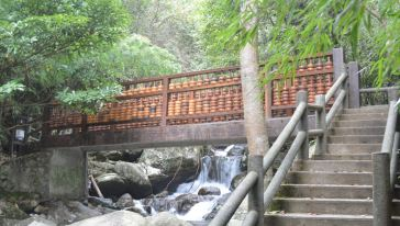 观音岩森林体验基地沿途特色--学字桥