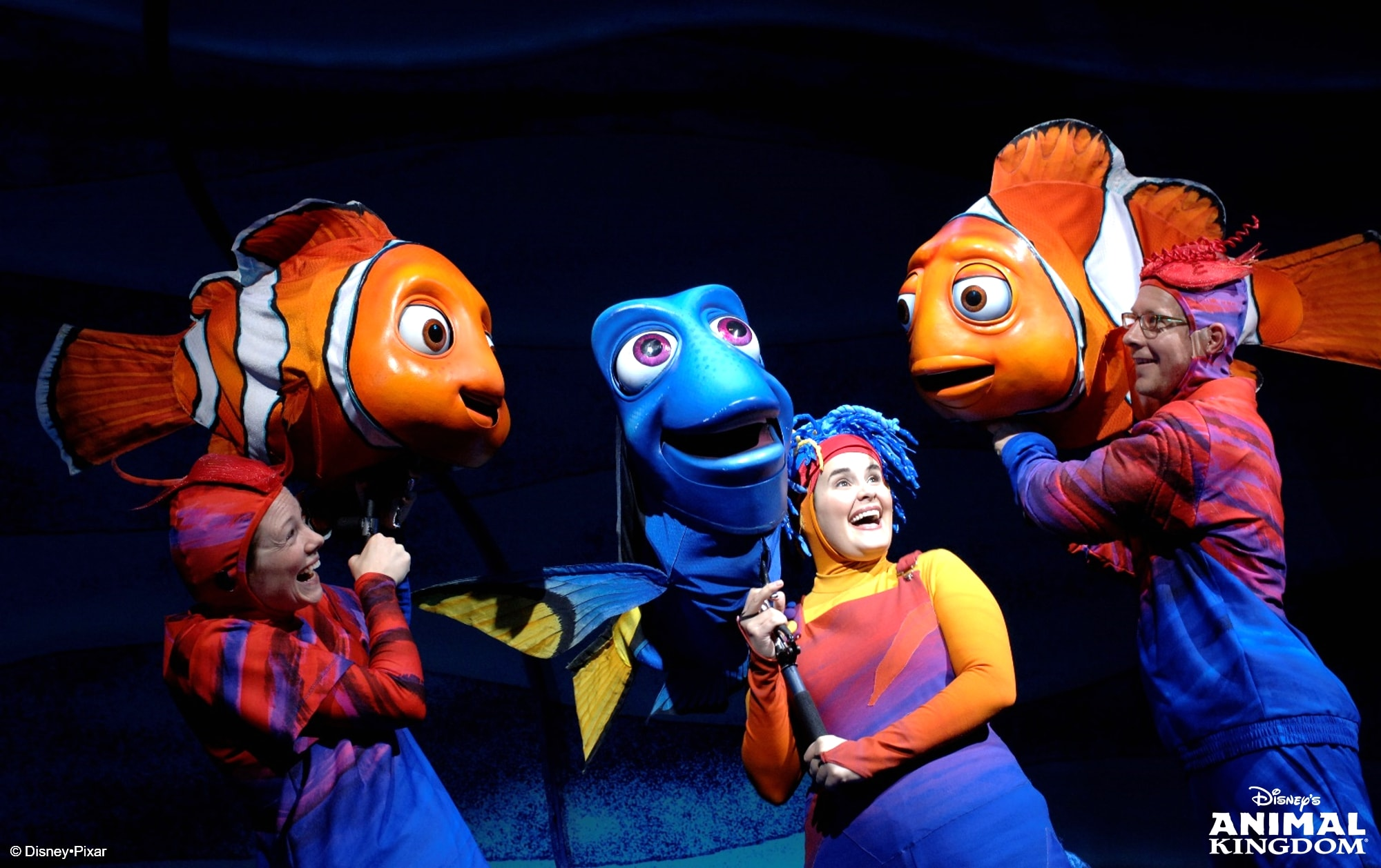 Finding Nemo - The Musical_自由尺寸_副本