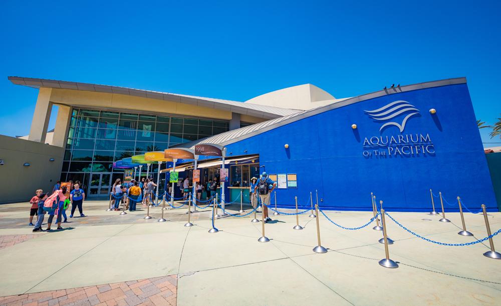 加州出海觀鯨+洛杉磯太平洋水族館+愛荷華戰艦博物館一日遊(含門票/中文司導)