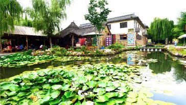 荷塘人家 (1)