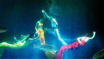 龙门海洋馆 (3)