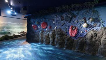 悉尼水族馆-新8