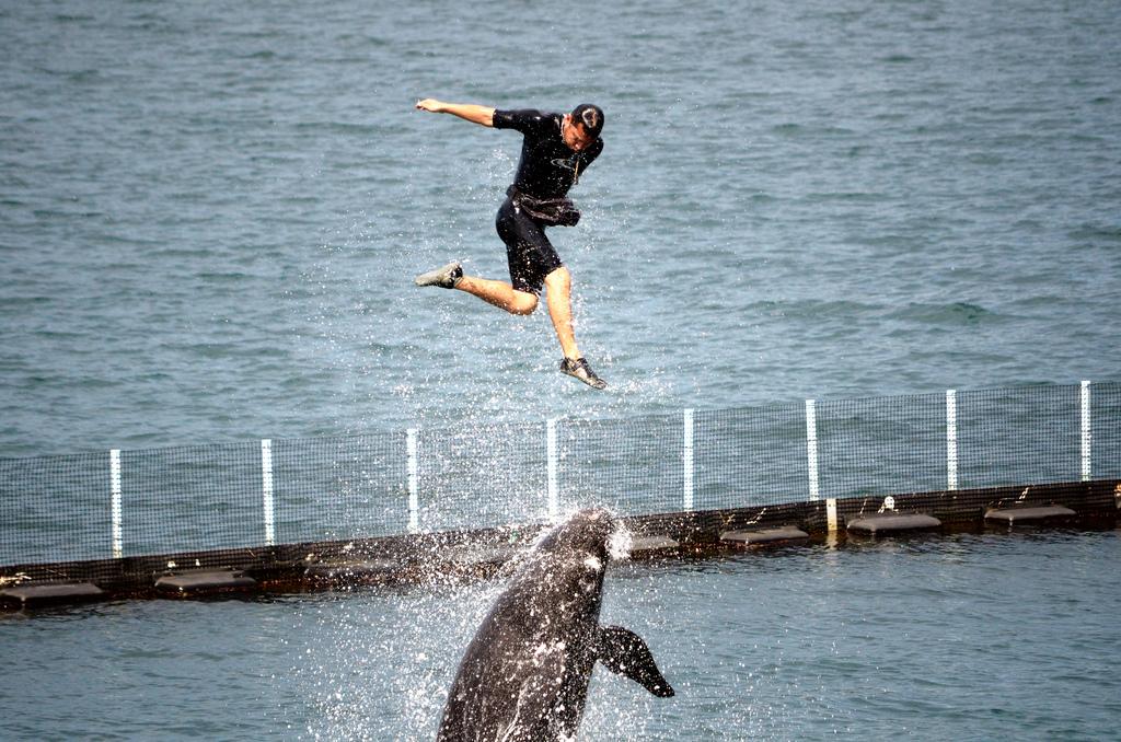 スービック湾ジャングル探検ツアー【スービック湾散策+動物園または水族館入場】