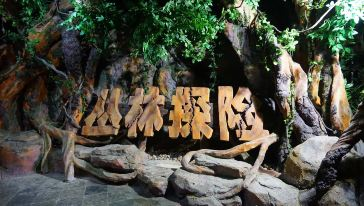 5丛林探险