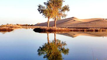 新疆轮台塔里木胡杨林公园 塔里木河一日游