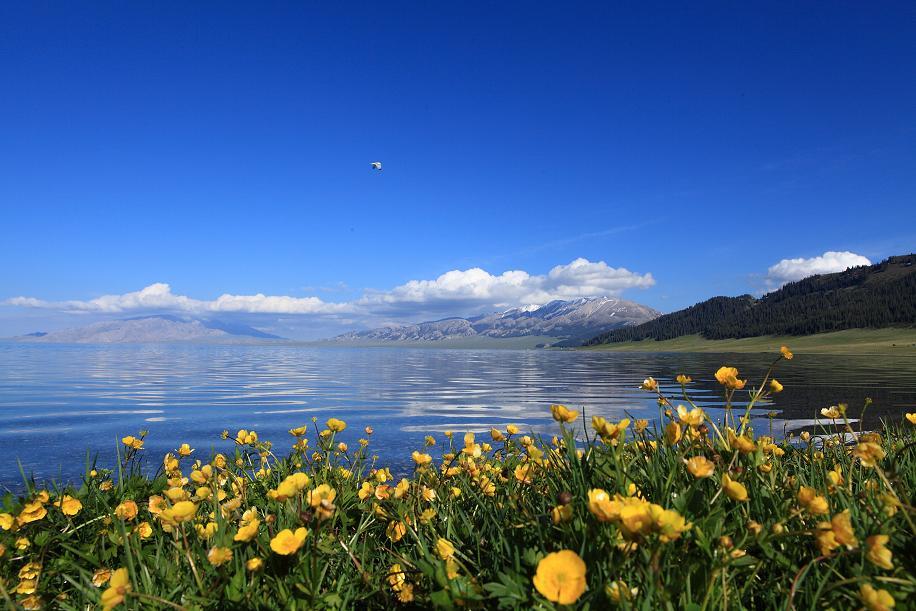 新疆伊犁賽里木湖一日遊(上門接送)