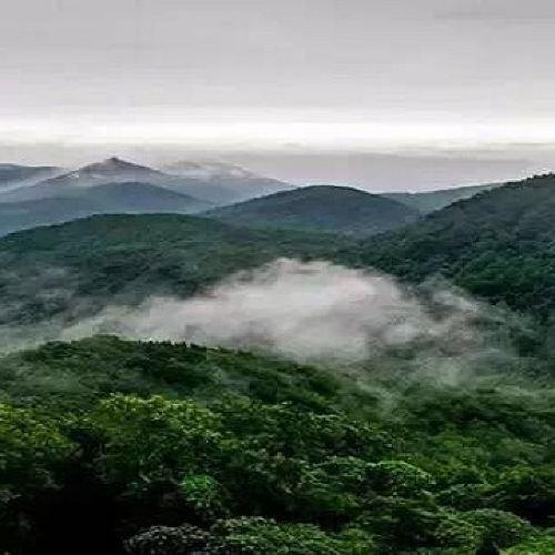 난징 중산 국립공원 입장권